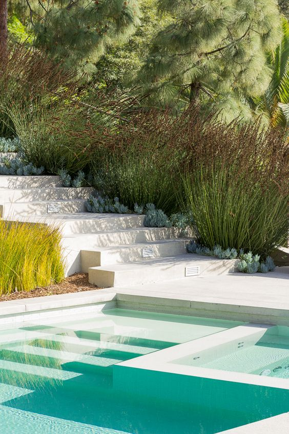 Swimming Pool Aesthetic Ideas: Sleek and Natural