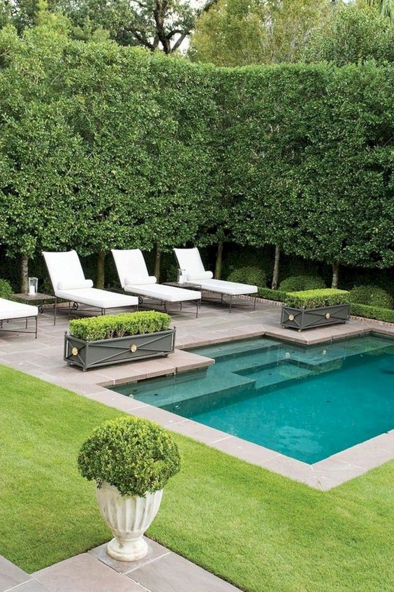swimming pool garden ideas 20