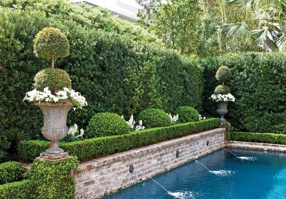 swimming pool garden ideas feature