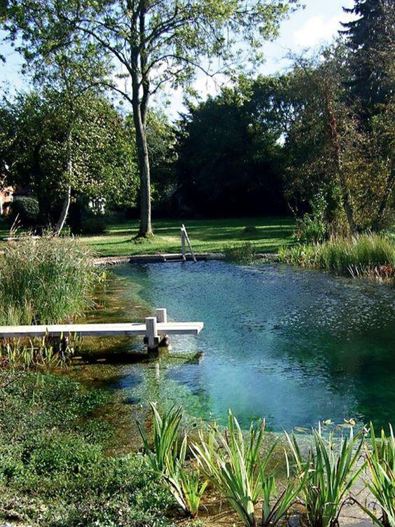 Natural Swimming Pool Ideas: Naturally Beautiful Pool