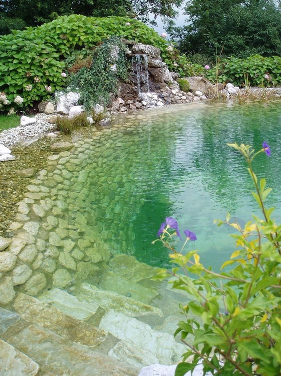 natural swimming pool ideas 11
