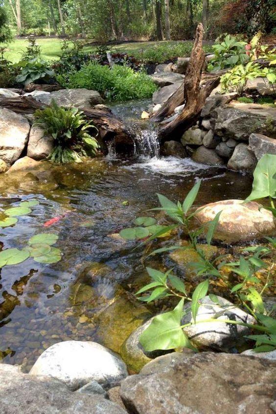 backyard pond ideas 12