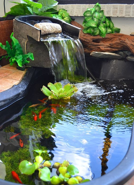 Backyard Pond Ideas: Earthy Fish Pond