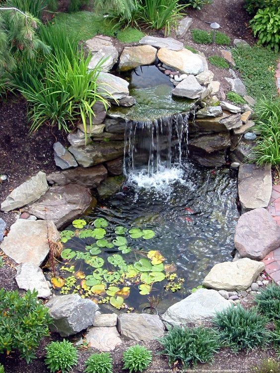 backyard pond ideas 5