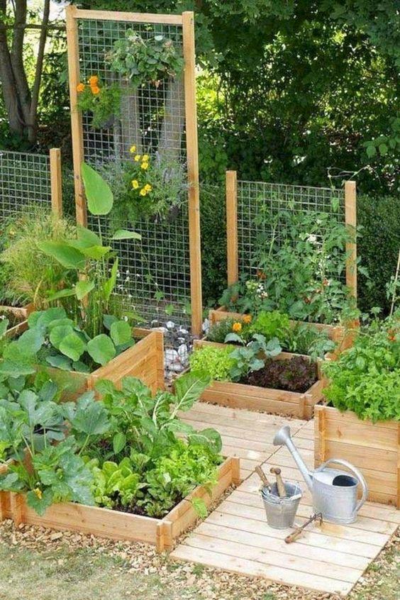 backyard garden ideas 5